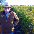 STEVE THE MAVERICK Back in the '70s, Lodi was known only for big co-op wineries, producing sweetish jug wine. Then along came Steve Borra. Steve wasn't interested in following the […]